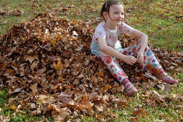 Autumn_leaves2_2