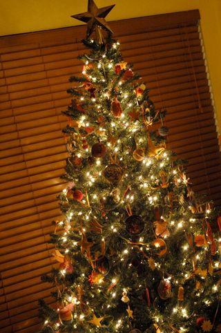 Xmas09_tree