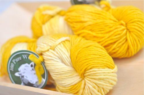 100purewool_yellowbaby